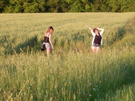 Celebrating fields and summer